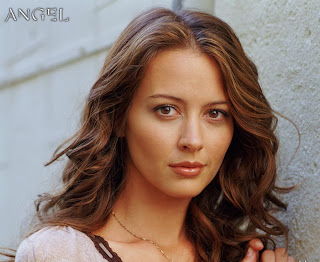 Amy Acker Dressing Style