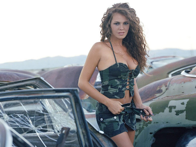 Nikki Cox wallpaper