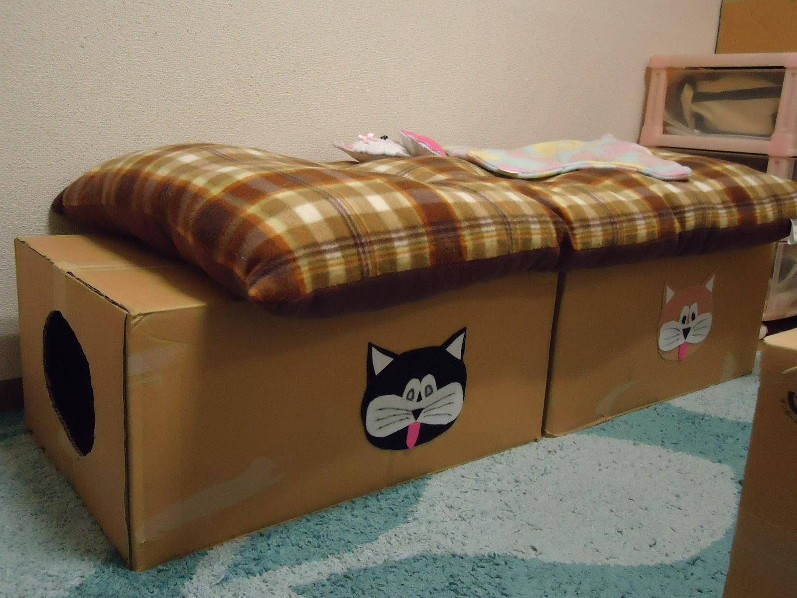 Momentos mily mingau t nel cama de papel o especialmente for Cama para gatos