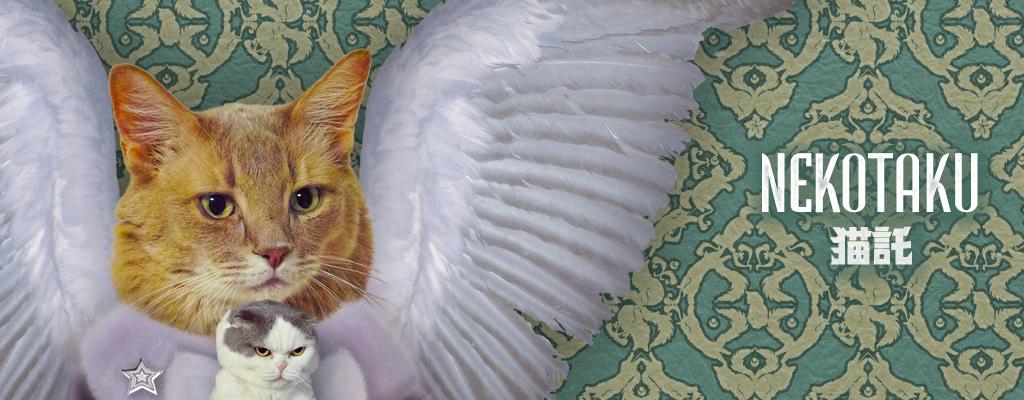 猫託 -nekotaku-