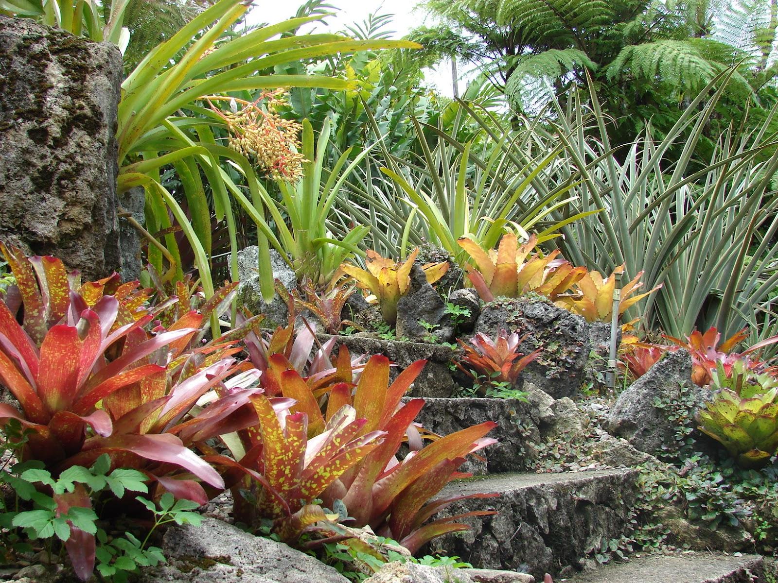 Paisajismo pueblos y jardines jardin de hacienda la for Jardines costa rica