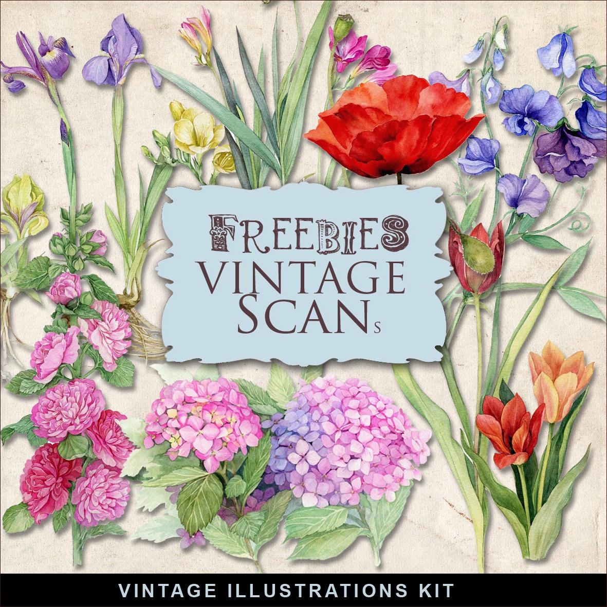 Freebies Vintage Floral Illustrations Kit:Far Far Hill