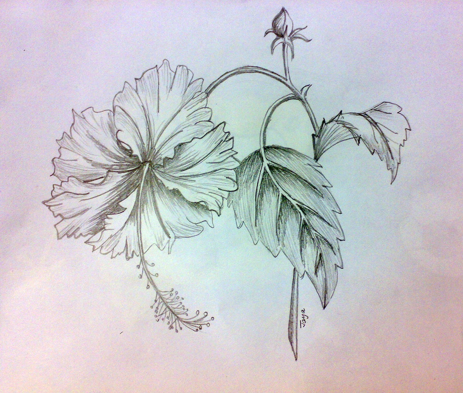 Pencil Flowers — Crafthubs