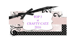 Top 3 Crafty catz challenge nº321