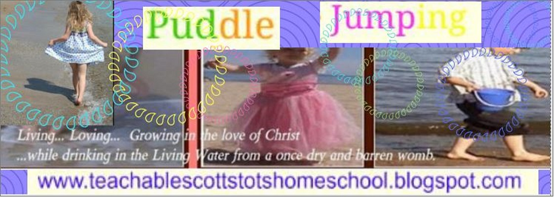 Puddle Jump Through Life With Us
