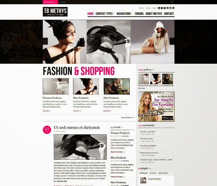 TB Methys Free Drupal Theme for Fashion