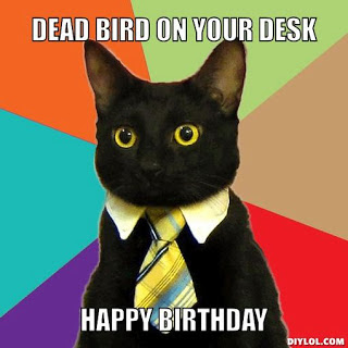 Funny Happy Birthday Memes Tumblr