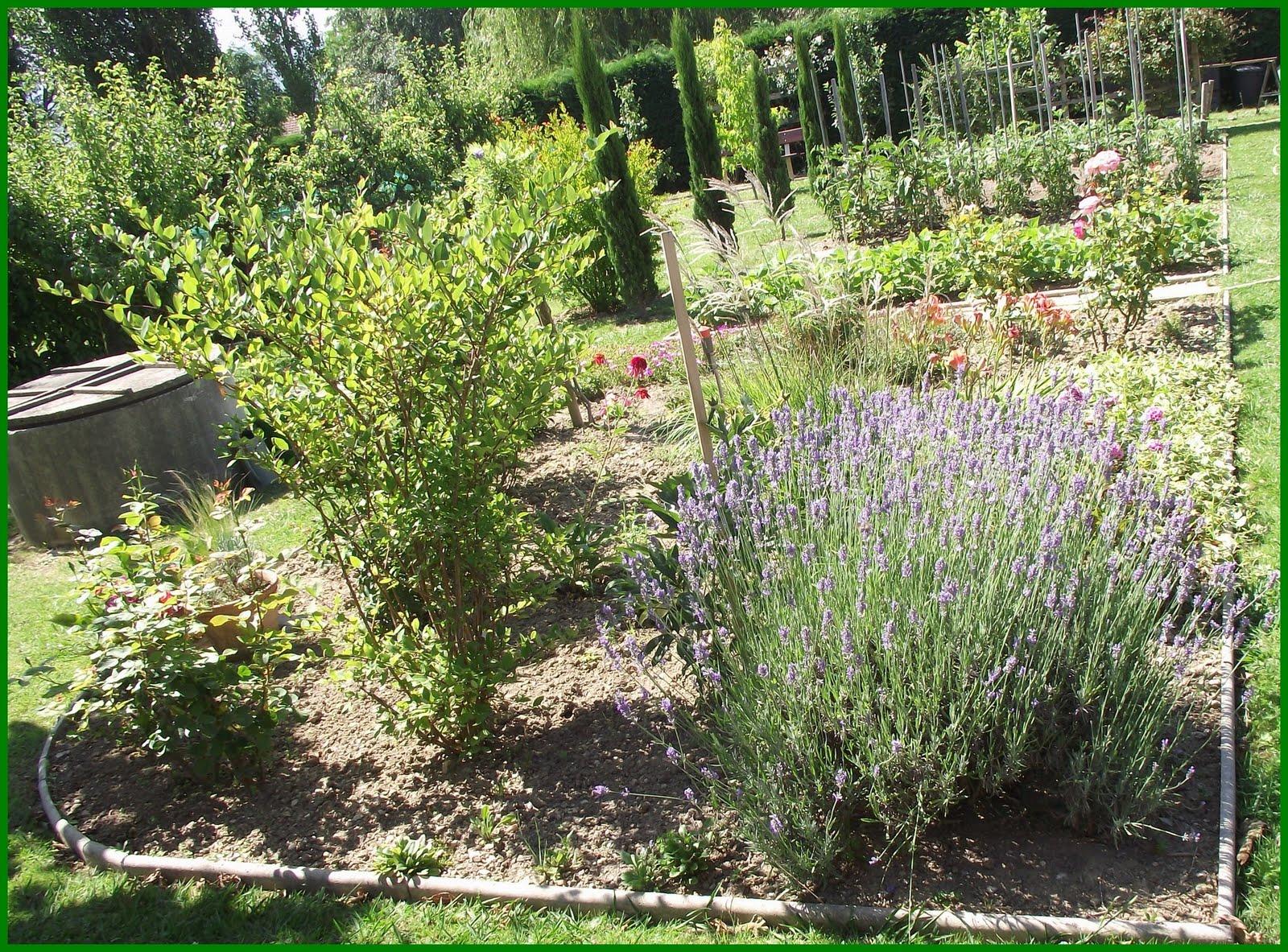 pigeonnieresplendy2 un beau jardin 1. Black Bedroom Furniture Sets. Home Design Ideas