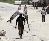 Pescador é visto carregando peixe enorme sobre a cabeça na Somália