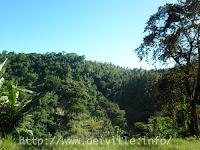 San Teodoro: Tamaraw Falls in Oriental Mindoro 2