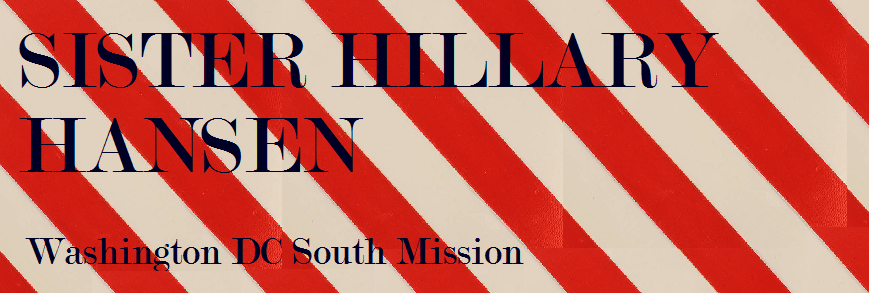 Sister Hillary Hansen: Washington DC South Mission