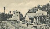 Molino de La Torreta Elche 1905