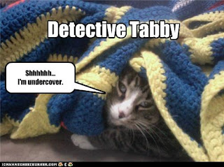 Detective Tabby