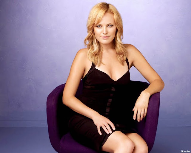 Malin Akerman wallpaper