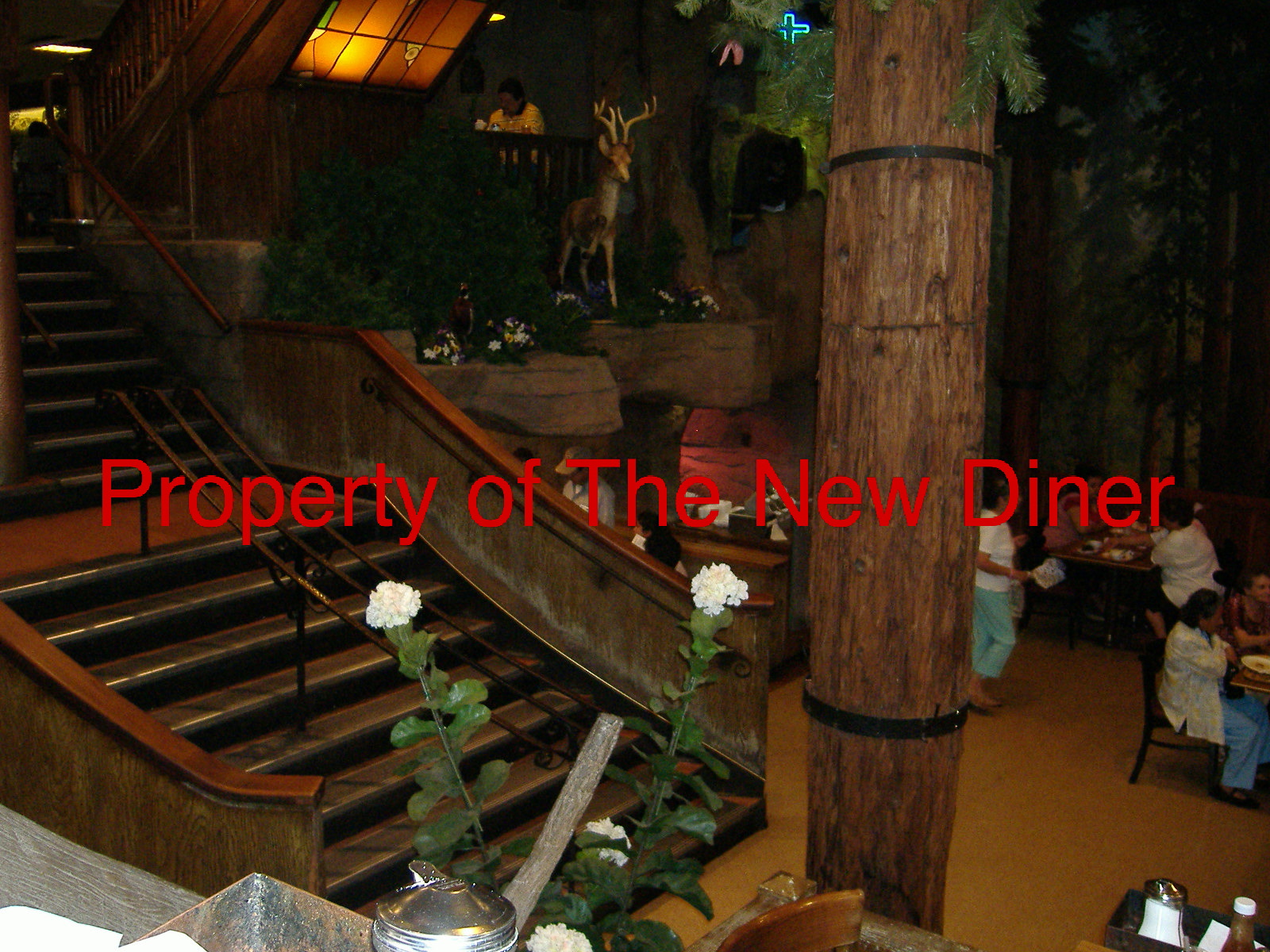 The New Diner: Clifton\'s Cafeteria