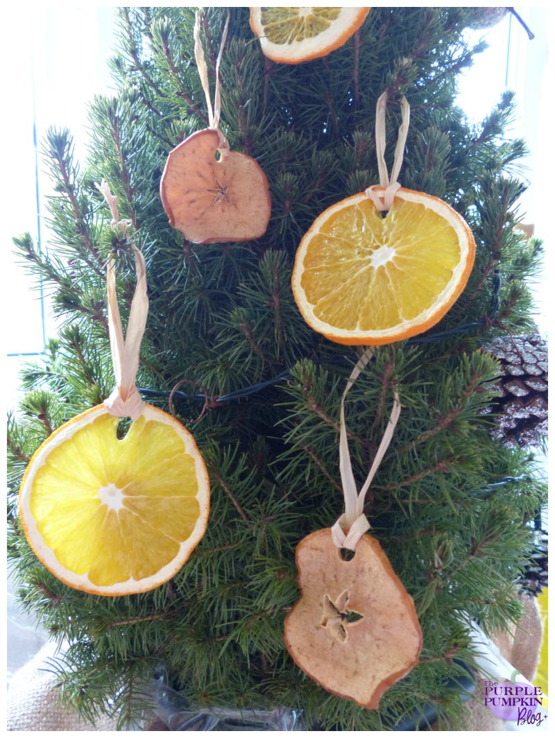 Christmas Tree Decoration Berries : Dried fruit christmas tree decorations