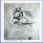 das-wartende Pferd