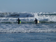 SCHOLARSHIP DAY 106: Golden Gate Park and Ocean Beach