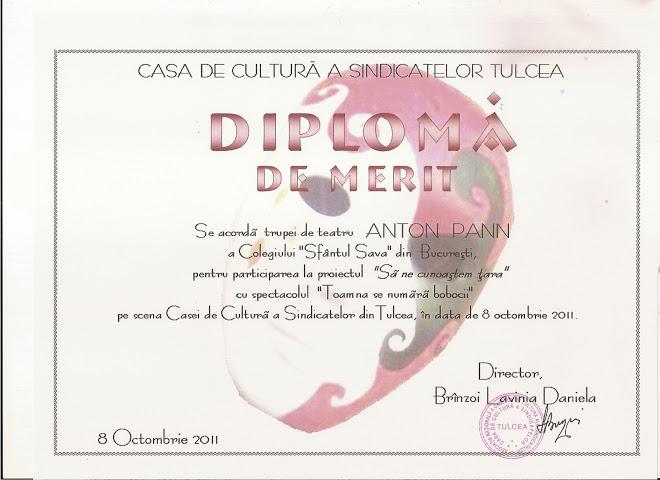 """DIPLOMA TULCEA TRUPEI """"ANTON PANN"""""""