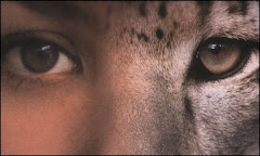 Vidéo : 6ème sens des animaux