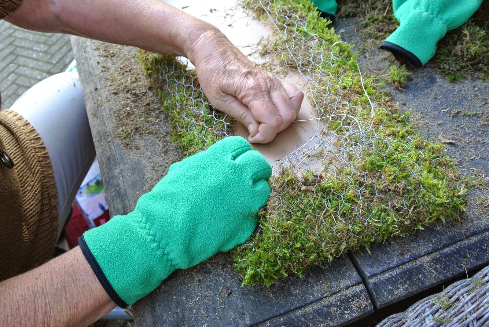 M i j m e r i n g e n mijmering 150 tuindecoratie van gaas en mos en consumindergebakjes - Voorbeeld van tuindecoratie ...