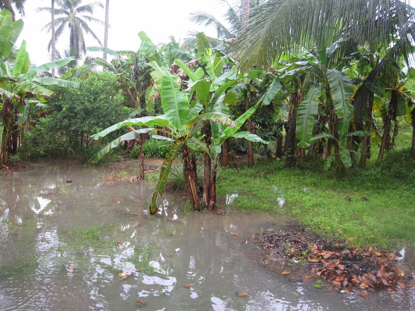 Persiapan banjir