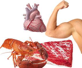 manfaat dan fungsi protein