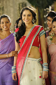 Andrea Jeremiah Photos from Tadakha Movie-thumbnail-6