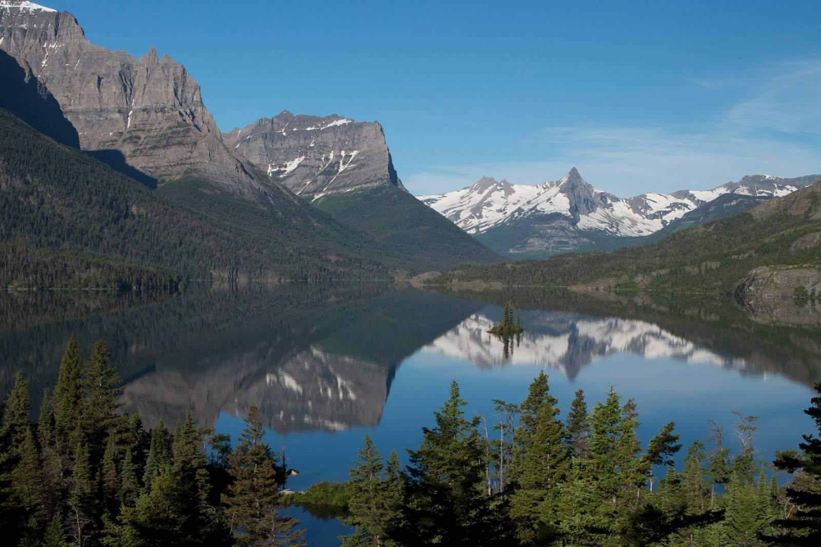 Displaying 18 gt  Images For - Alpine Tundra Birds   Tundra Birds