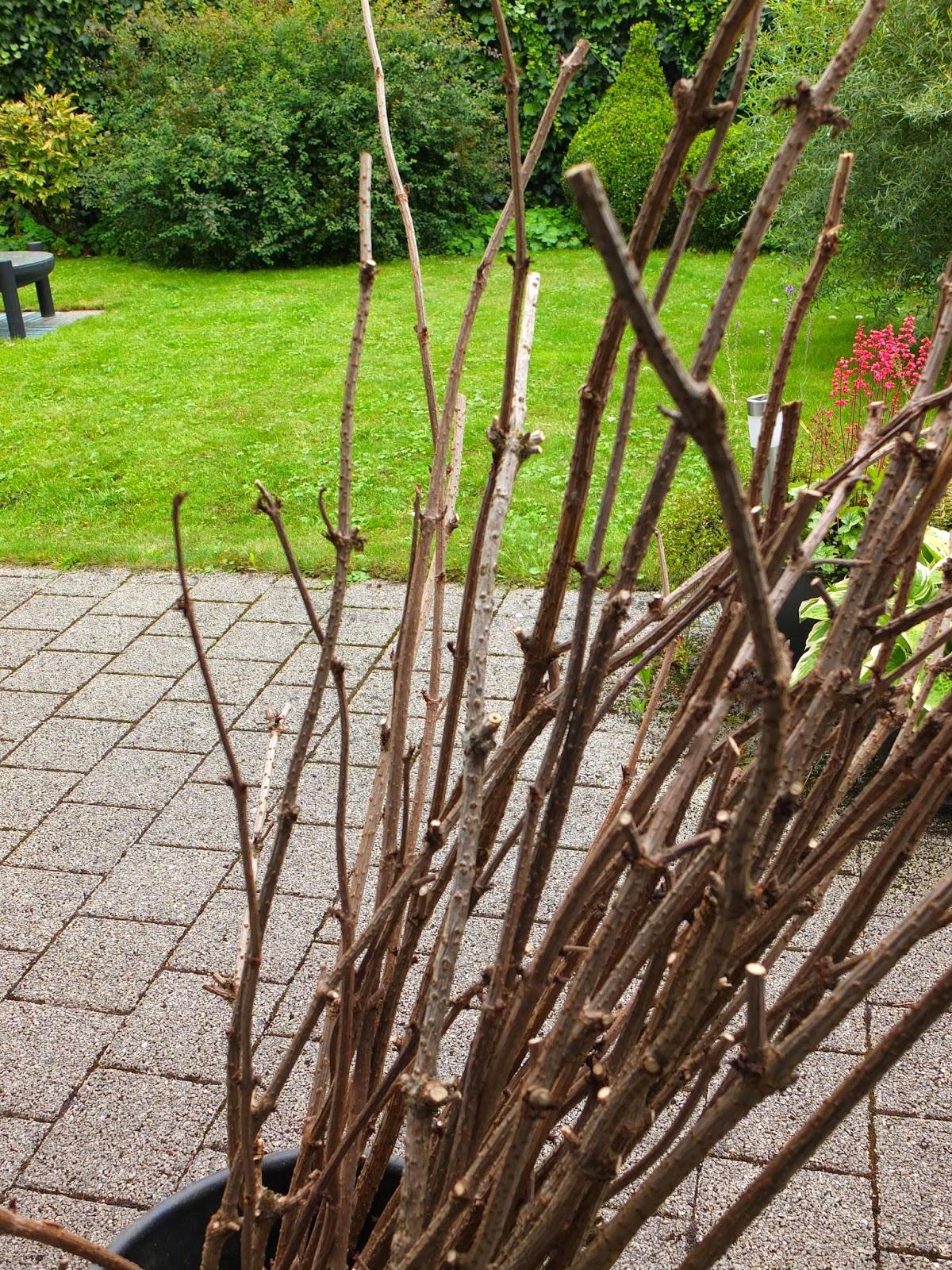 Mosaik-Kunsthandwerk: Stuhl für den Garten