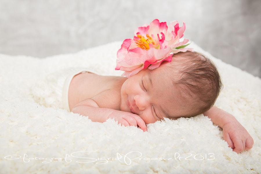 vastsyndnud-beebi-naeratab-fotopesa-fotostuudio