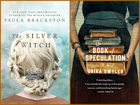 The Silver Witch by Paula Brackston; The Book of Speculation by Erika Syler