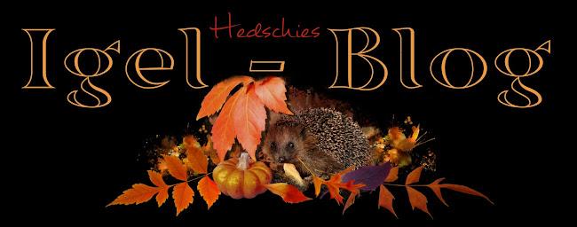 Hedschies Igel-Blog