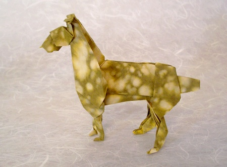 Origami Dog Boxer Montroll 3D
