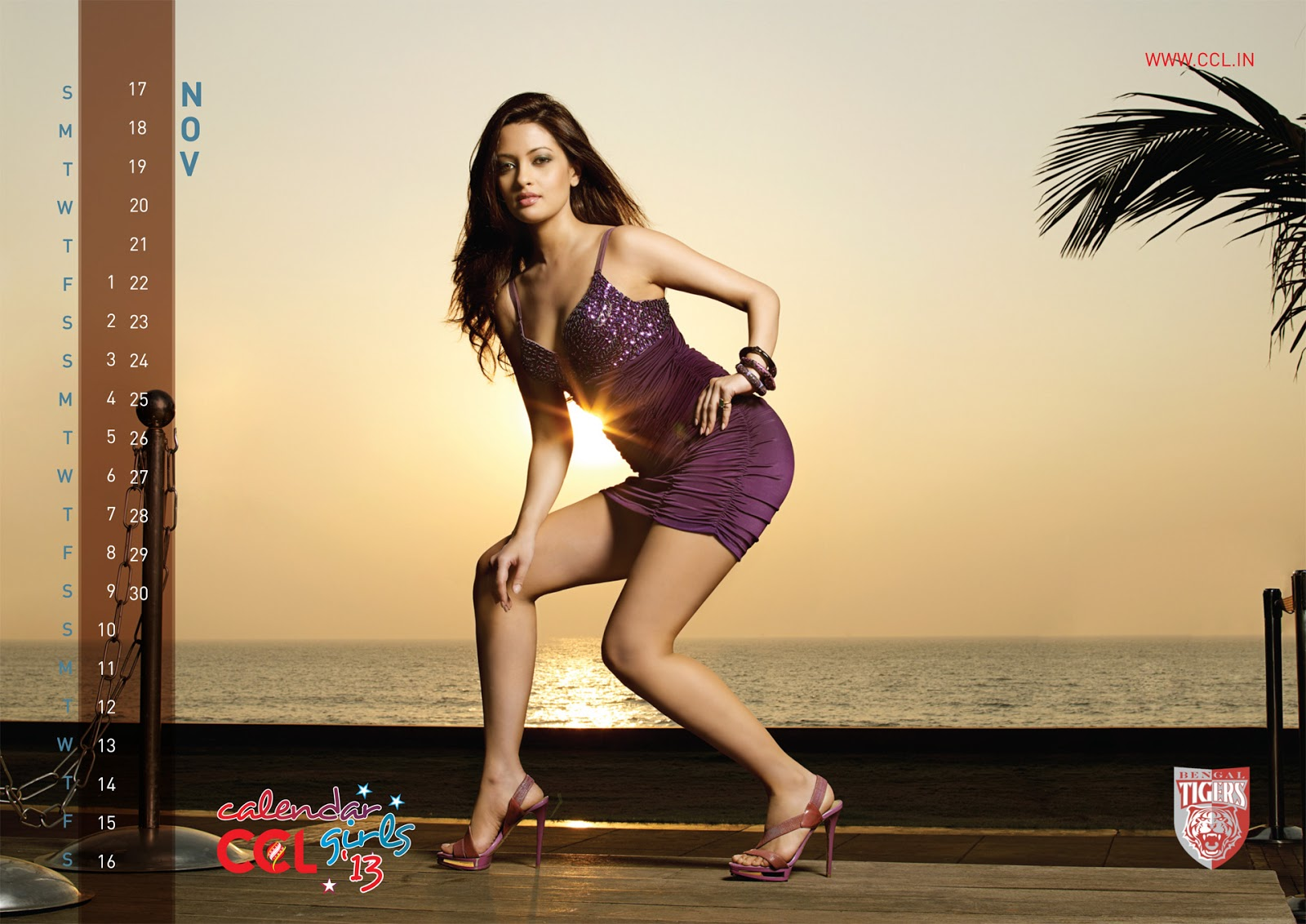 Celebrity Cricket League (CCL) Calendar Girls 2013 Hot ...