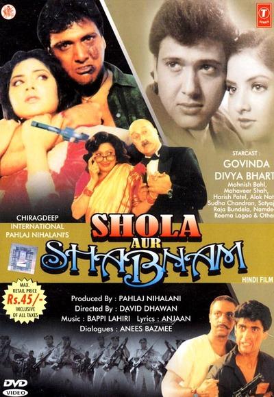 Shola Aur Shabnam 1992 Hindi WEB HDRip 480p 450mb