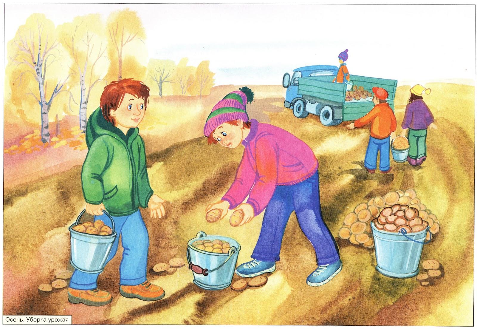 Картинки для детей с признаками осени