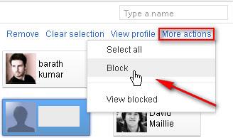 Google+: Circles block