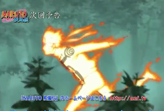 Naruto Shippuden Episode 304 Subtitle Indonesia3GP MKV MP4