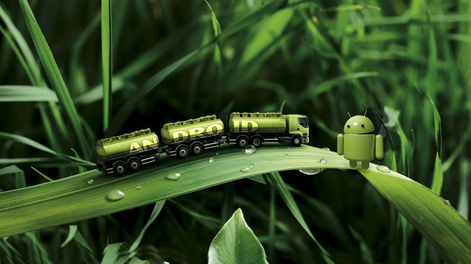 Android Truck on Green Leaves HD Wallpaper