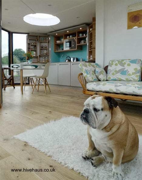Dos hexágonos unidos forman la cocina, el comedor, y la sala de estar
