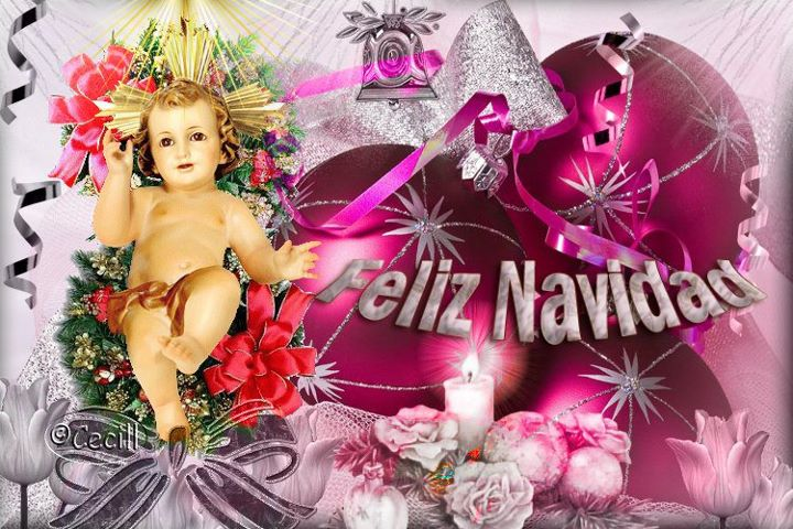 Feliz navidad                      V+24