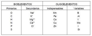 Bioelementos primarios y secundarios