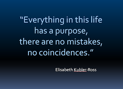 Everything in Life Has a Purpose