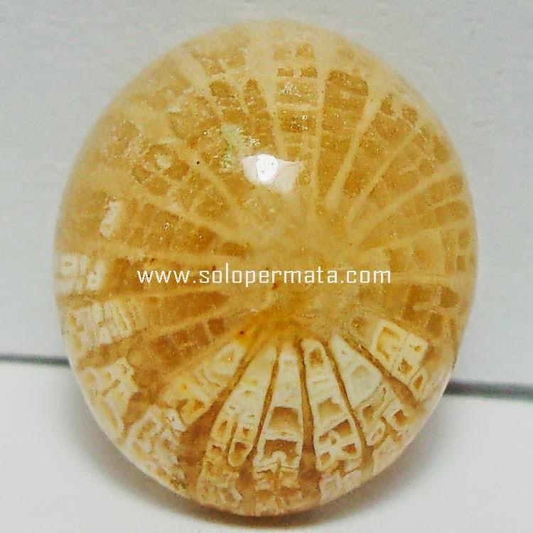 Batu Permata Akik Fosil Motif Teratai - SP050