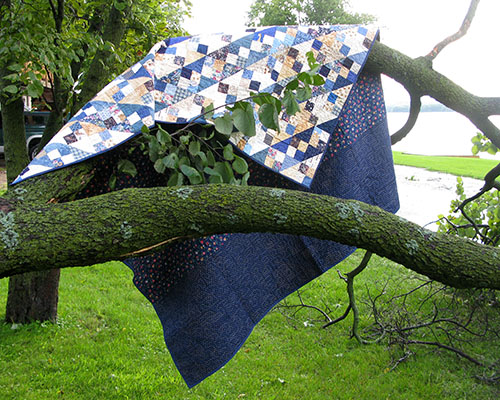 Blue Ridge quilt back in the branches at Freemotion by the River