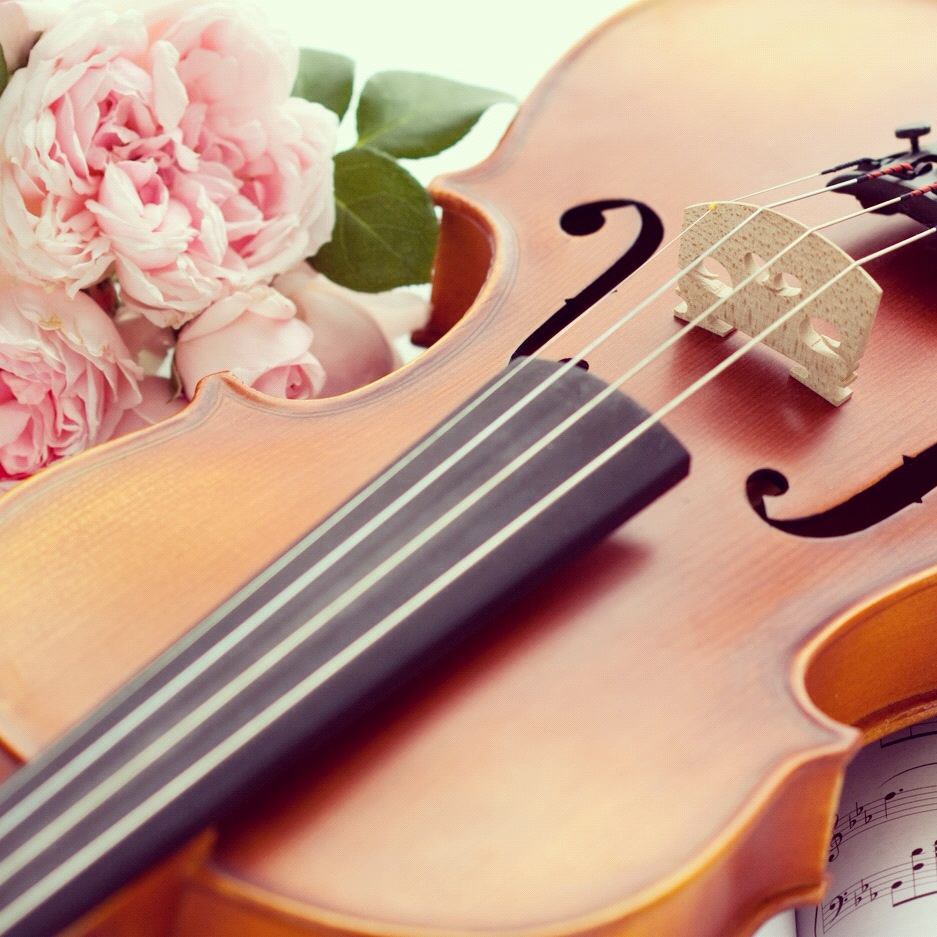 Фото цветов с музыкальными инструментами