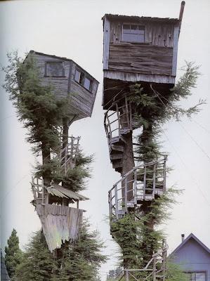 Rumah Pohon Tertinggi