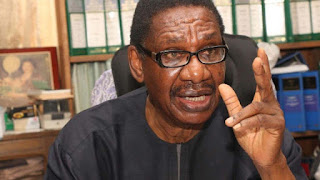 2019 presidency: Prof. Sagay speaks on Atiku being 'threat' to Buhari