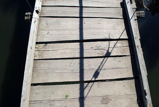 """Подвесной мост. Региональный ландшафтный парк """"Приингульский"""". Николаевская область."""
